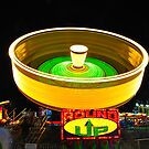 NY State Fair 2009 VI by PJS15204
