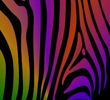 Rainbow Zebra by Darlene Lankford Honeycutt