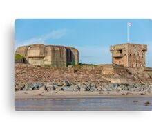 Fort Henry Canvas Print