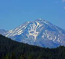 Beautiful Shasta by E.R. Bazor