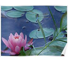 Dragon Flower Poster