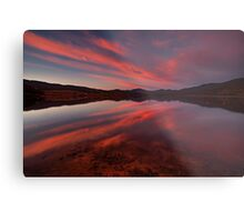 Patience Is The Best Remedy For Every Trouble Metal Print