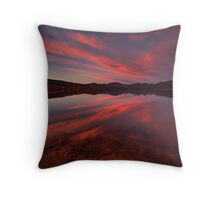 Patience Is The Best Remedy For Every Trouble Throw Pillow