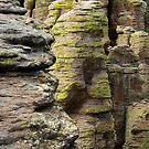 All That Texture ~ Echo Canyon, Chiricahua National Monument, Chiricahua Mountains, Arizona, USA by Vicki Pelham