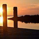 Salvo Sunset by Sandy Woolard