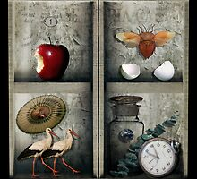 Time and the Riddle by Lydia Marano