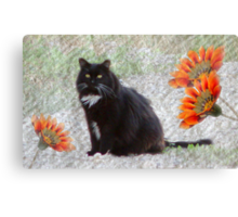 Textured Tuxedo Cat Canvas Print