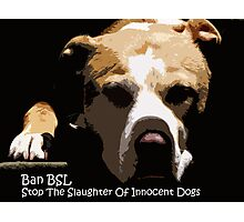 Ban BSL Photographic Print
