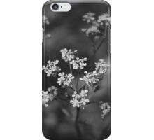 fragile-flowers of may iPhone Case/Skin
