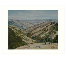 Vast Valley Art Print