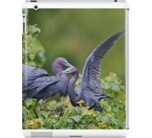 Little Blue Herons  iPad Case/Skin