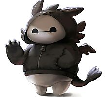 Baymax like as toothless Photographic Print