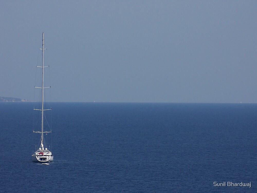 Deep Blue Sea  by Sunil Bhardwaj