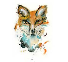 Wiley Mr Fox Photographic Print