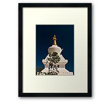 The Stupa Framed Print