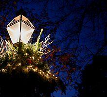 Princeton Lamp Post by eelsblueEllen