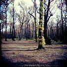 untitled #6 by Bronwen Hyde