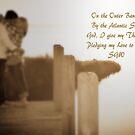 Pledge My Love to Thee by Sandy Woolard