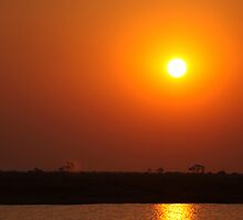 Sunset  - Chobe River by Steve Bullock