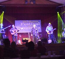 The Furys in Concert in Portaferry by ilass