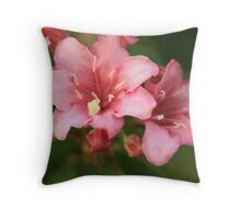 Sandpaper Petals - Original Throw Pillow