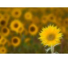 Summer fractals! Photographic Print