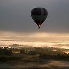 Yarra Valley by Globaleye