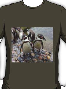 Humboldt Penguin Gang T-Shirt
