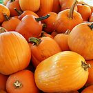 Pumpkins Galore by debbiedoda
