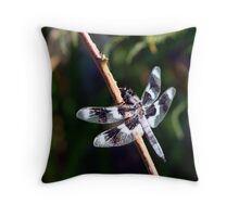 Eight-Spotted Skimmer Perched on Grass Throw Pillow