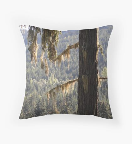 Elders in our Midst Throw Pillow