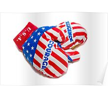 Boxing gloves USA Poster