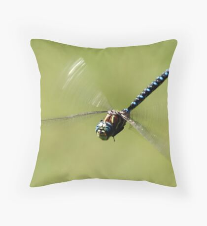 Paddle-Tailed Darner in Flight Throw Pillow
