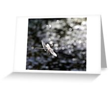 Across the Sea of Stars (Paddle-Tailed Darner) Greeting Card