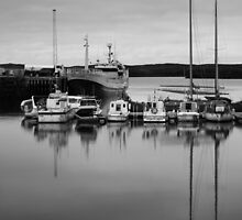 Sheltered Harbour by Thomas Fitzgerald