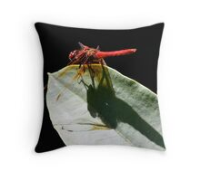 Cardinal Meadowhawk Shadow on Leaf Throw Pillow