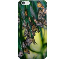 Elegant Blossoms iPhone Case/Skin