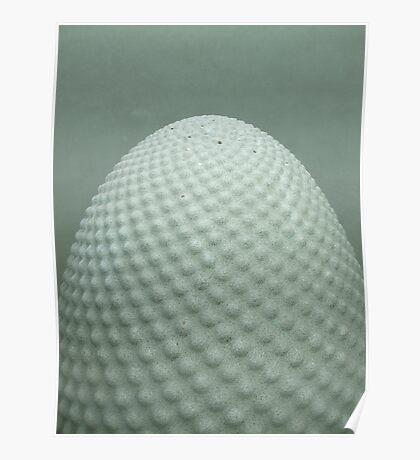 Granite Egg!!! Poster