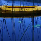 Yellow on Blue by BlaizerB
