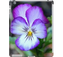 Viola Tricolor - Heart's Delight | Middle Island, New York  iPad Case/Skin