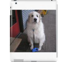 I'm ready for treats or pets iPad Case/Skin