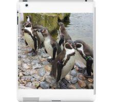 Humboldt Penguin Peeking iPad Case/Skin