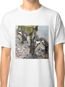 Humboldt Penguin Peeking Classic T-Shirt