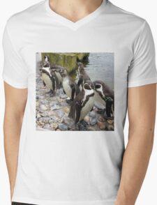 Humboldt Penguin Peeking Mens V-Neck T-Shirt