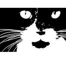Cat Print/My Patch Abstract Graphic Cat Print Black and White - Jenny Meehan Design Photographic Print