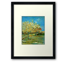 'Orchard' by Vincent Van Gogh (Reproduction) Framed Print