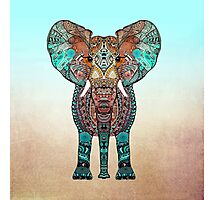BOHO SUMMER ELEPHANT Photographic Print