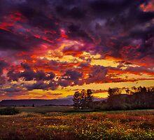 denman sunset   rogue valley   by daledaniel