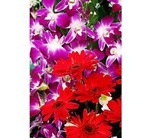 Spreading Colors Photographic Print