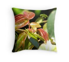 Raw Red Theory Throw Pillow